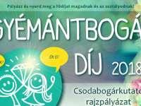 GyémántBogár Díj 2018 csodabogárkutató pályázat - A Táblácska és a Gyémántbogár pályázata iskolás gyerekeknek.